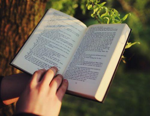 Voglia di un buon libro